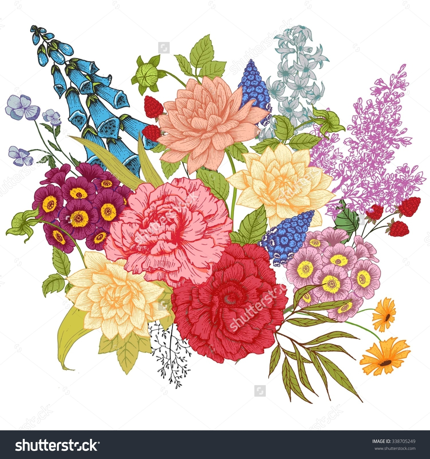 Vector Drawing Composition Flower Peony Rose Stock Vector.