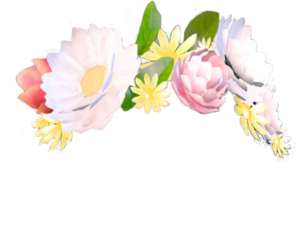 flowers crown snapchat filter snapchatfilter cute freet.
