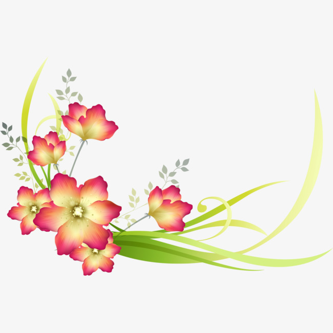Gorgeous Flower Decoration Background, Flower Clipart, Beautiful.