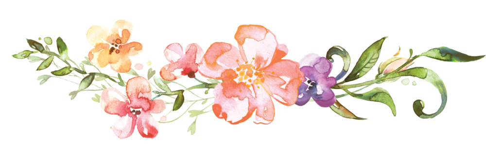 Flower dividers clipart images gallery for free download.