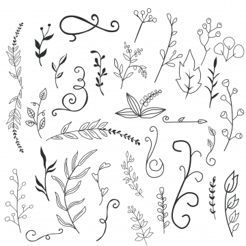 Flower Doodle Png, Vector, PSD, and Clipart With Transparent.