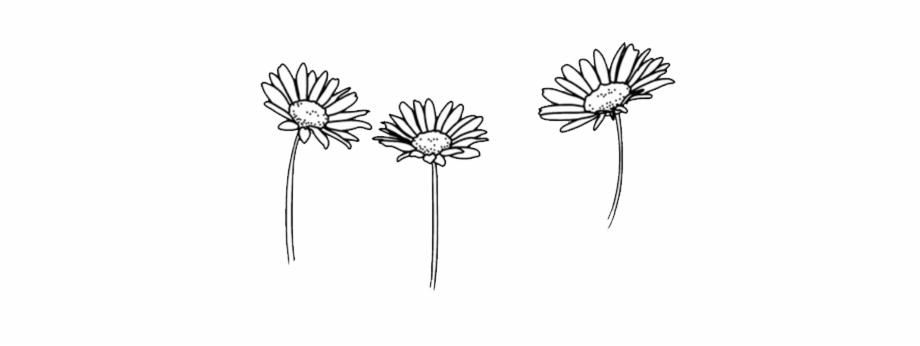 flower #art #flowers #doodle #freetoedit.