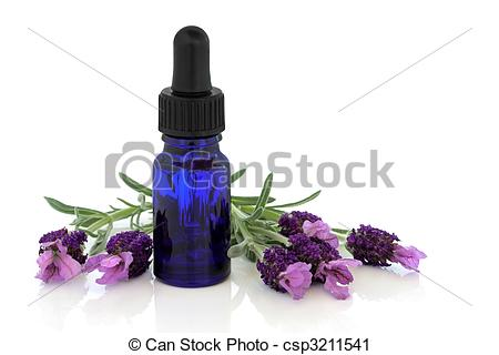 Stock Photography of Lavender Herb Flower Essence.