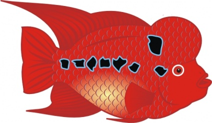 Flower Horn Fish, Clipart.