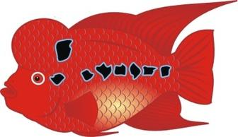 Red Colored Fish Free Vectors.