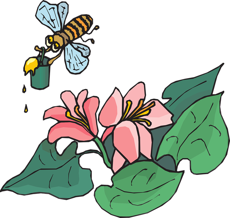 Free vector graphic: Bee, Flying, Insects, Carrying.