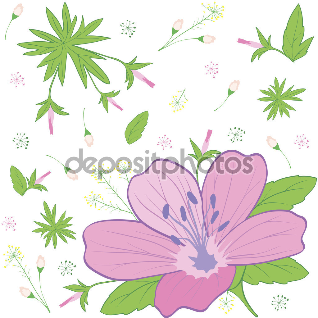 Flower forest geranium — Stock Vector © shapket #62911161.