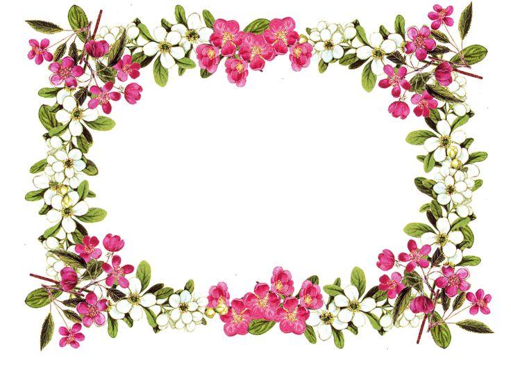 Flower Frame Clipart Free Download Clip Art.