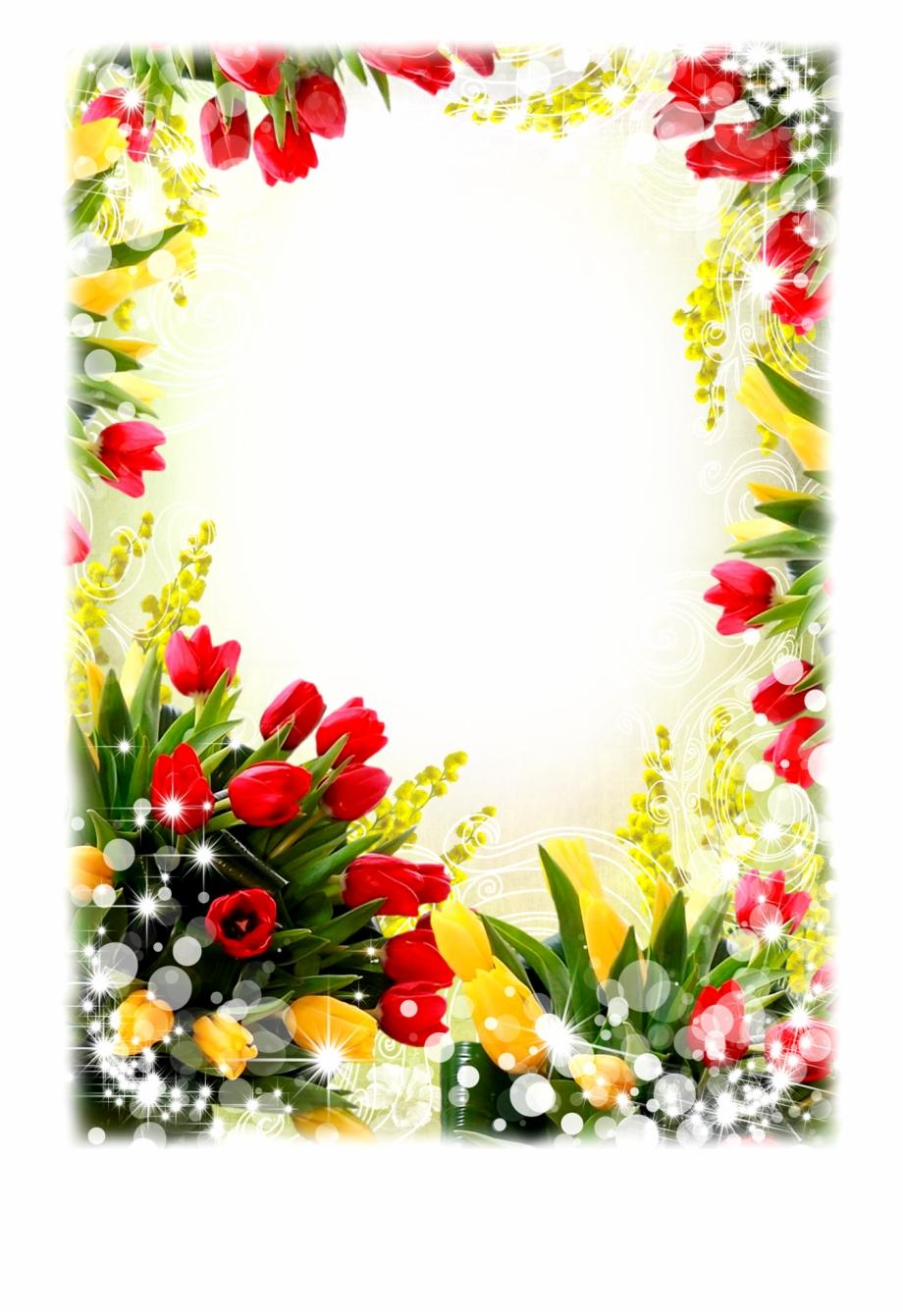 Nice Flower Frame Png.