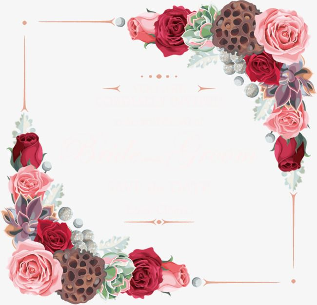 Vector Flowers Border, Flowers, Decoration PNG and Vector with.