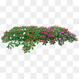 Flower Garden Png, Vector, PSD, and Clipart With Transparent.