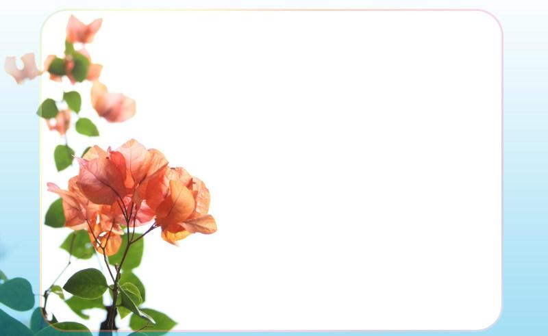 Flower Garden Border Frame.