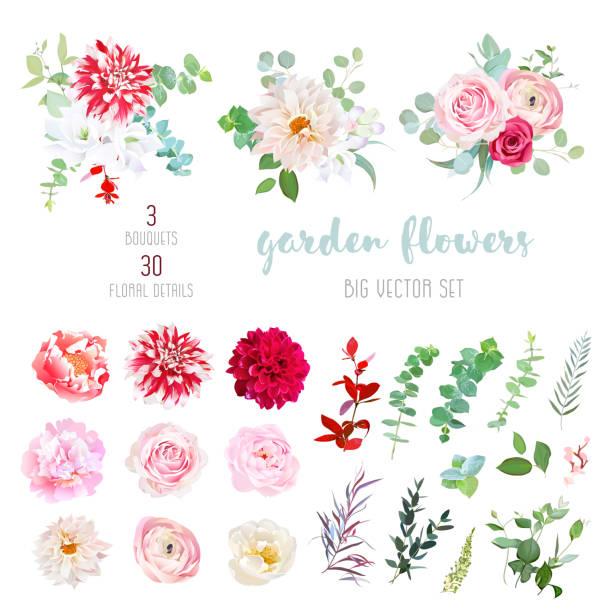 Best Flower Illustrations, Royalty.