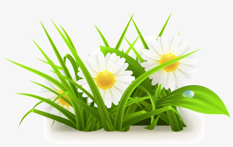 Flowers Grass Vector Grass Vector 3055*1776.