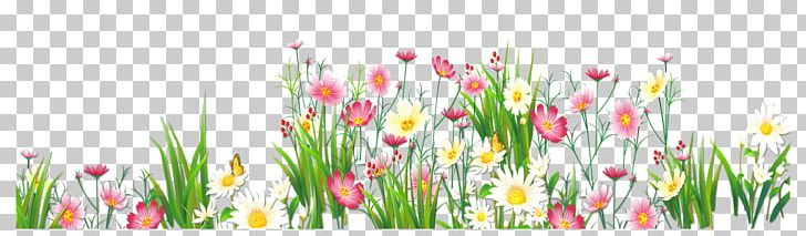 Flower Grasses PNG, Clipart, Artificial Flower, Clipart, Common.