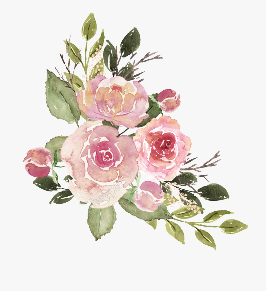 Flower Illustration Png.