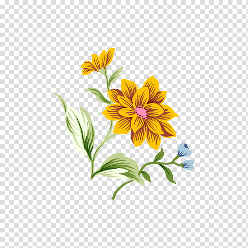 Flowers , yellow and pink flower illustration transparent background.