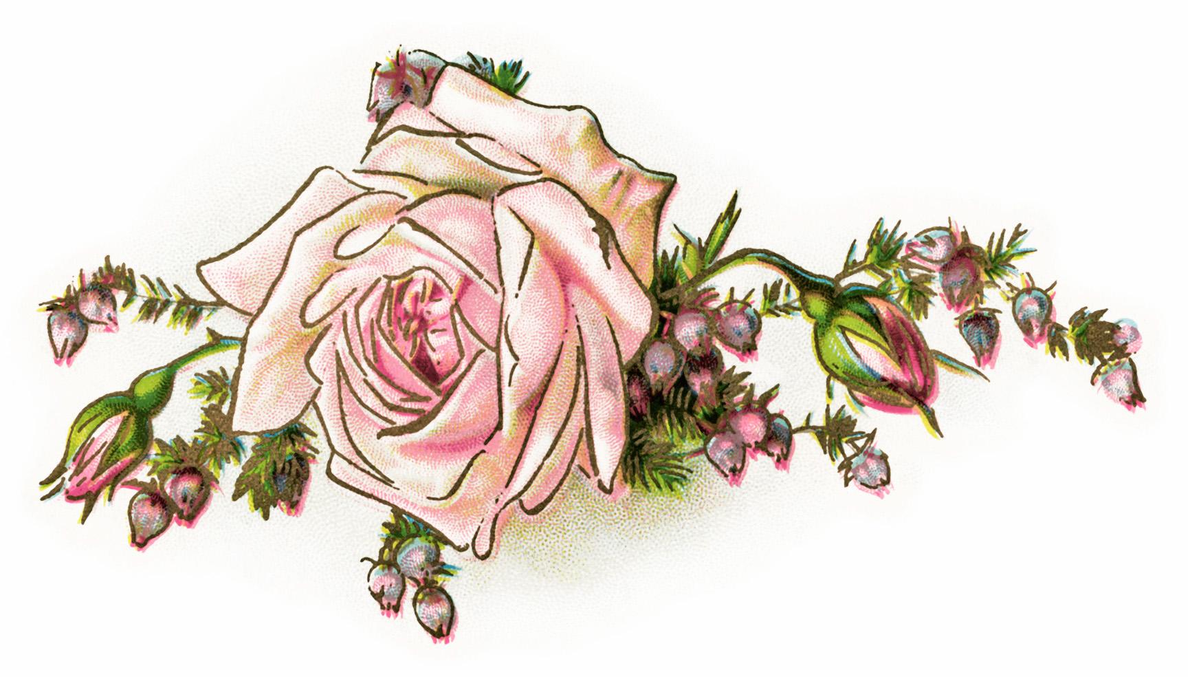 Vintage Flower Clipart & Vintage Flower Clip Art Images.