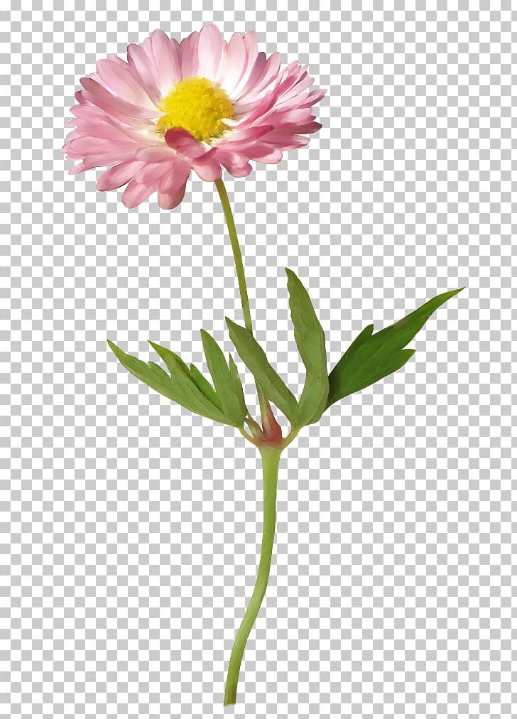 Flower Gerber format , flower PNG clipart.