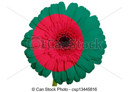 Stock Photography of gerbera daisy flower in colors national flag.