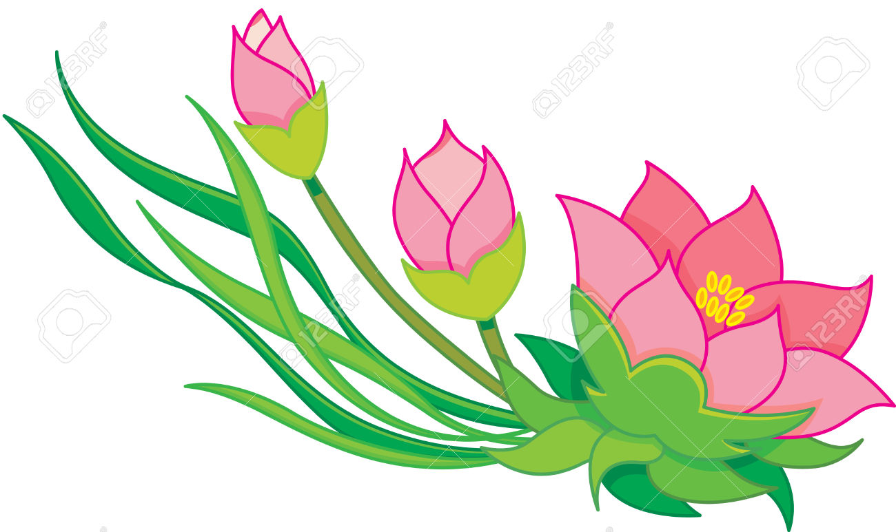 Oriental Flowers, Water Lily Royalty Free Cliparts, Vectors, And.