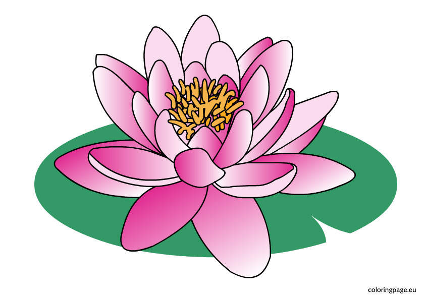 Water flower clipart.