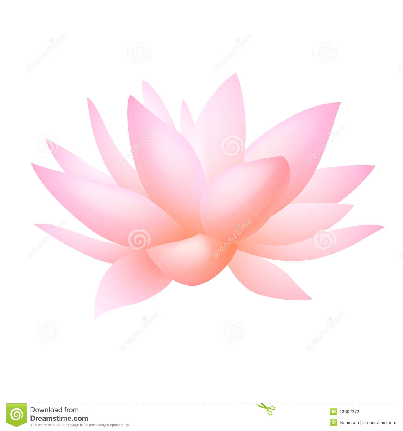 Flower lily water clipart clipground pink water lily flower clip art izmirmasajfo