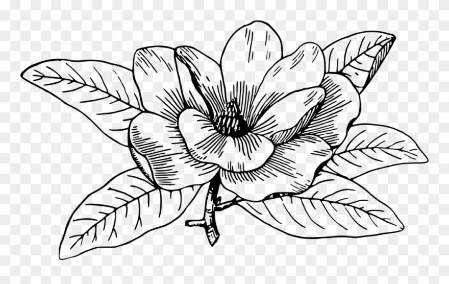 Flower Line Art 28, Buy Clip Art.