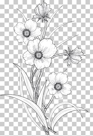 17,720 flowers Line Drawing PNG cliparts for free download.