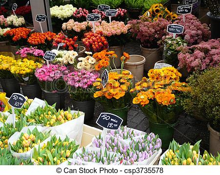 Pictures of Flower market in Amsterdam.