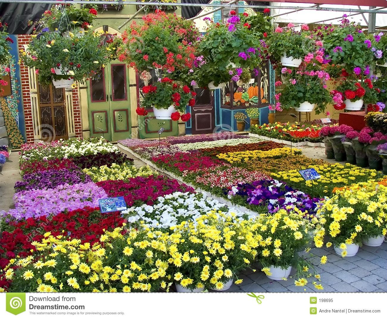 Flower Market Royalty Free Stock Photo.