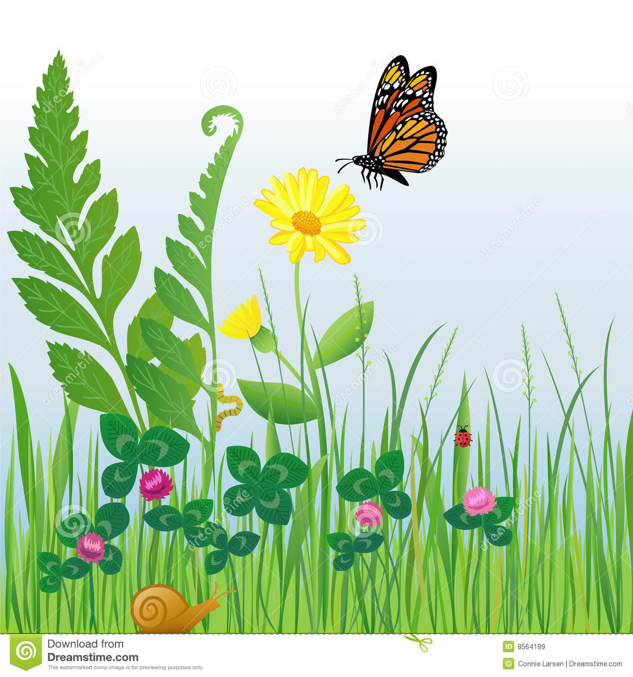 Meadow Stock Illustrations.