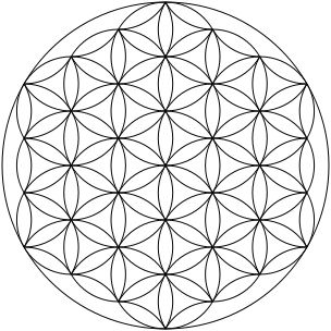 1000+ ideas about Flower Of Life on Pinterest.