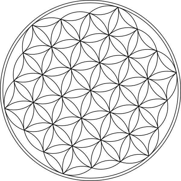 Carlotheman Flower Of Life Symbol clip art Free vector in Open.