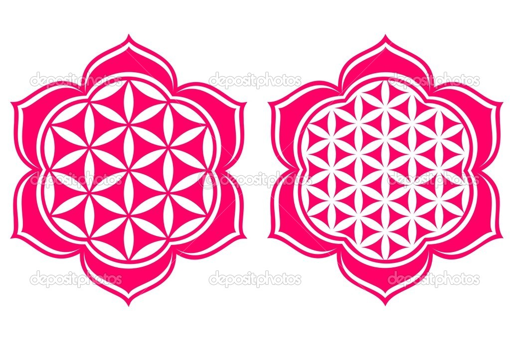 Flower of life Stock Vectors, Royalty Free Flower of life.