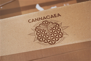 Cannabis business flower of life logo.