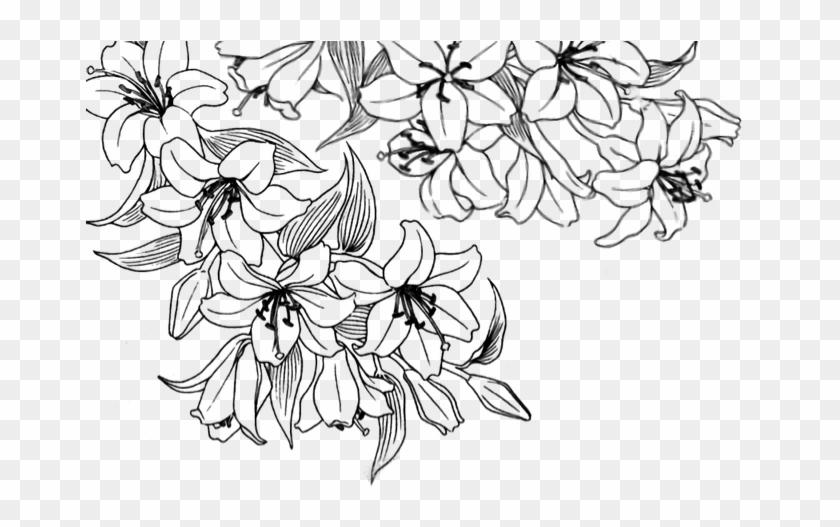 Flower Overlay Transparent.