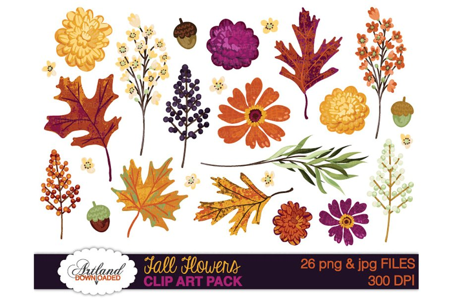 Fall Flowers Clipart Pack ~ Illustrations ~ Creative Market.