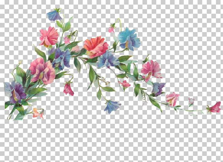 Flower Painting , Floral Transparent , pink and blue flowers.