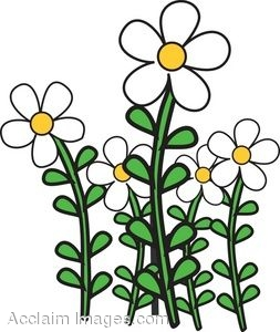 Clip Art of a Patch of Daisy Flowers.