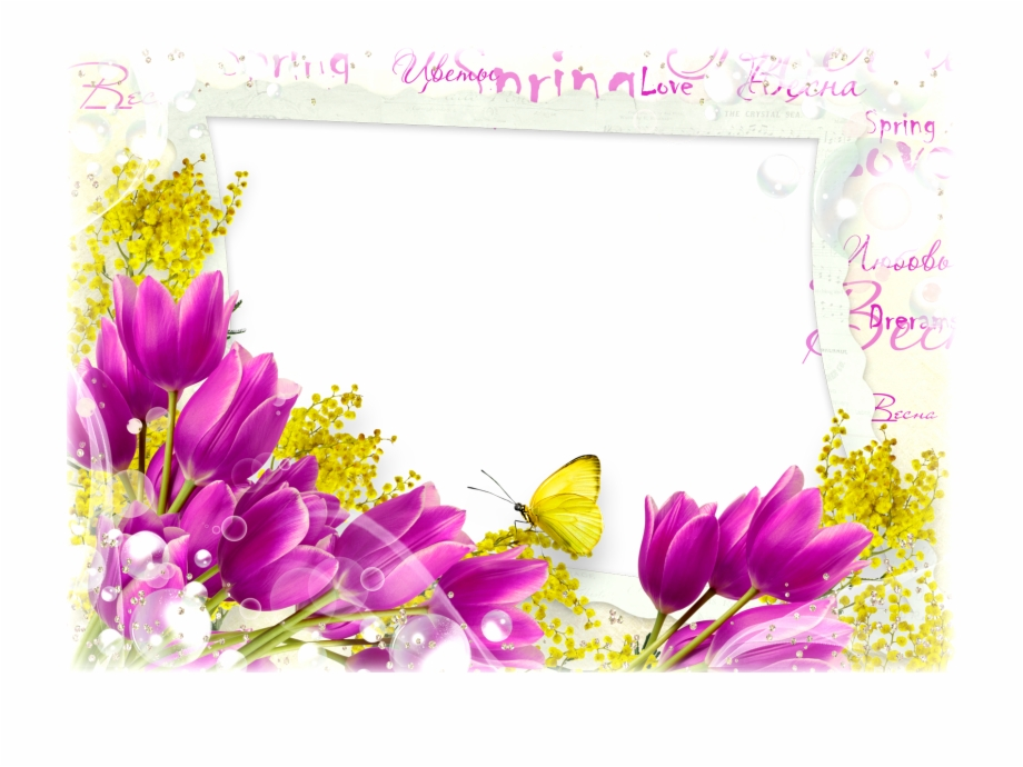 Png Flower Frame Twelve.