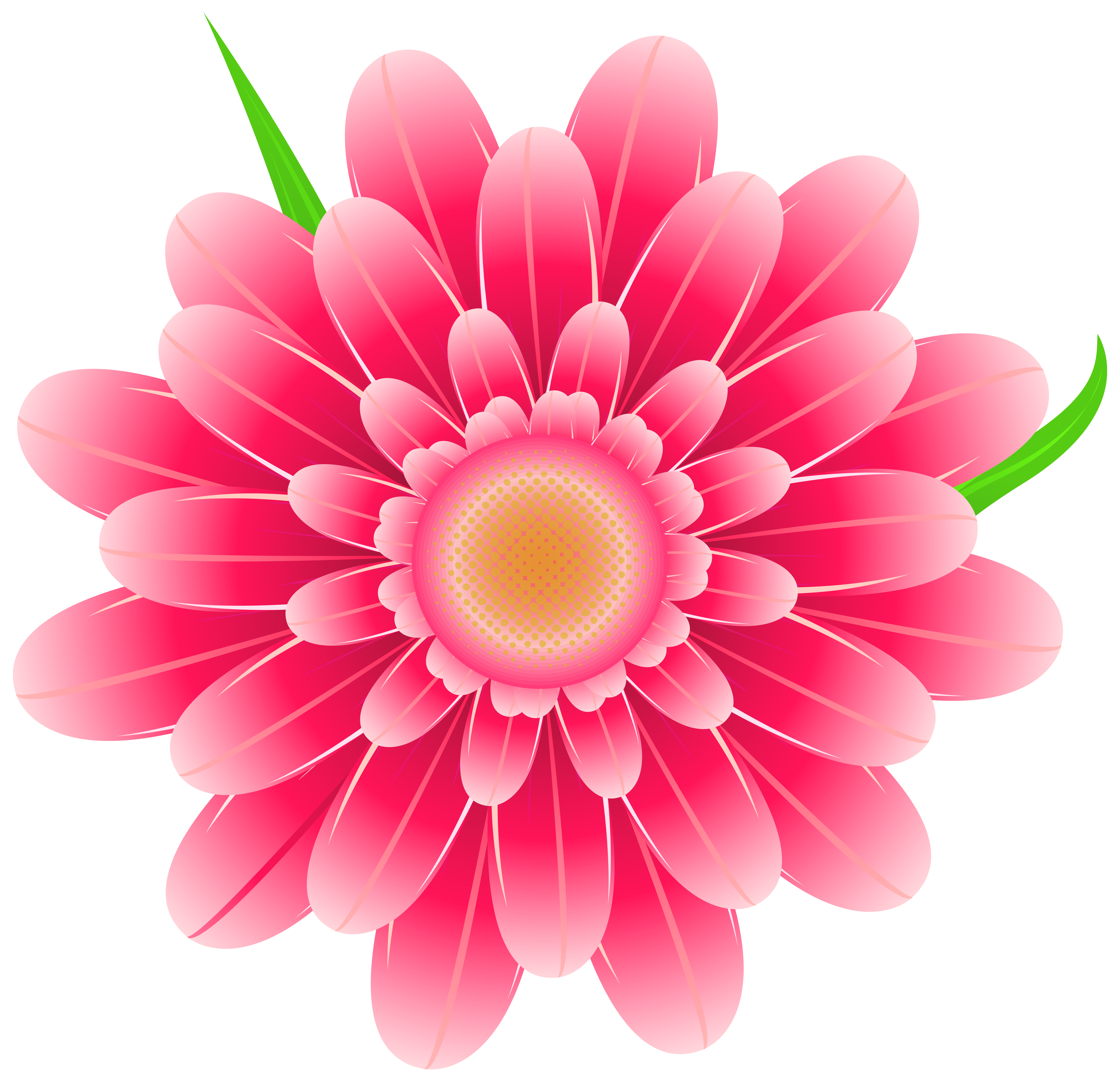 clipart flower png #5
