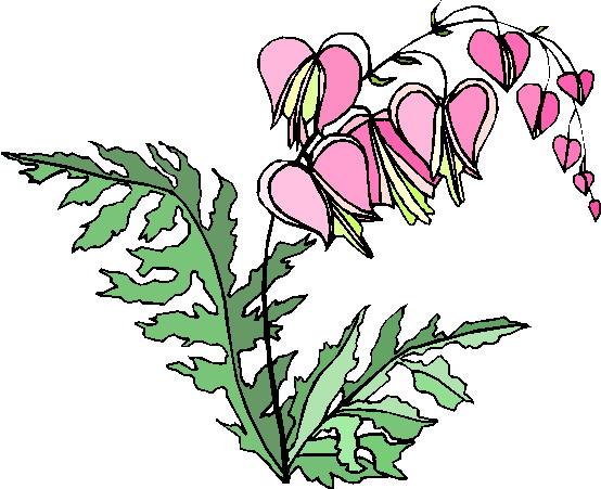 Plants Clipart.