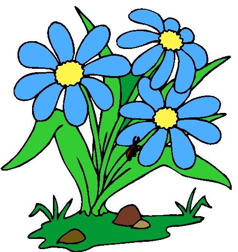 Plants clipart pictures.