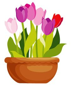 Flower pot clipart png.