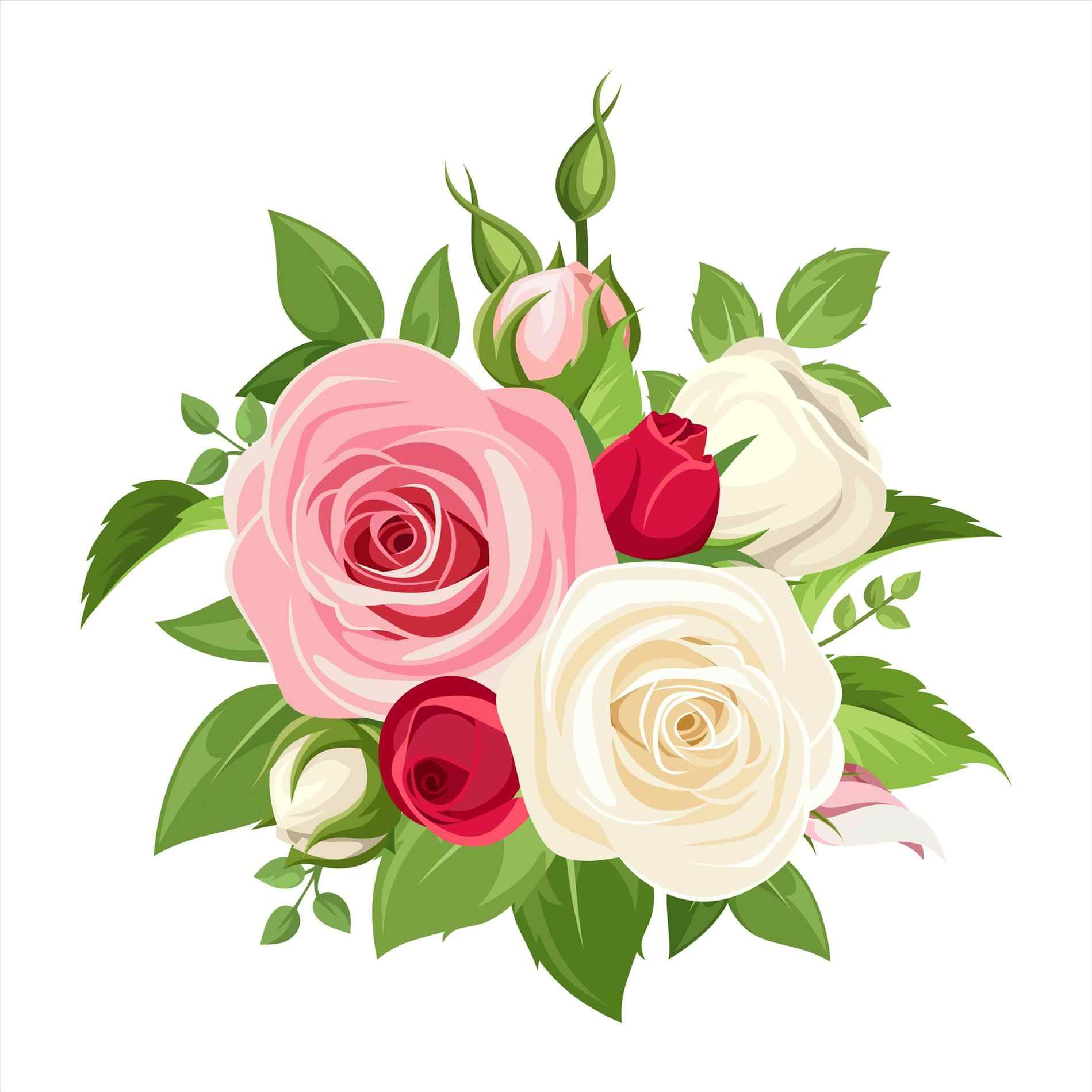 Rose Vector Png.