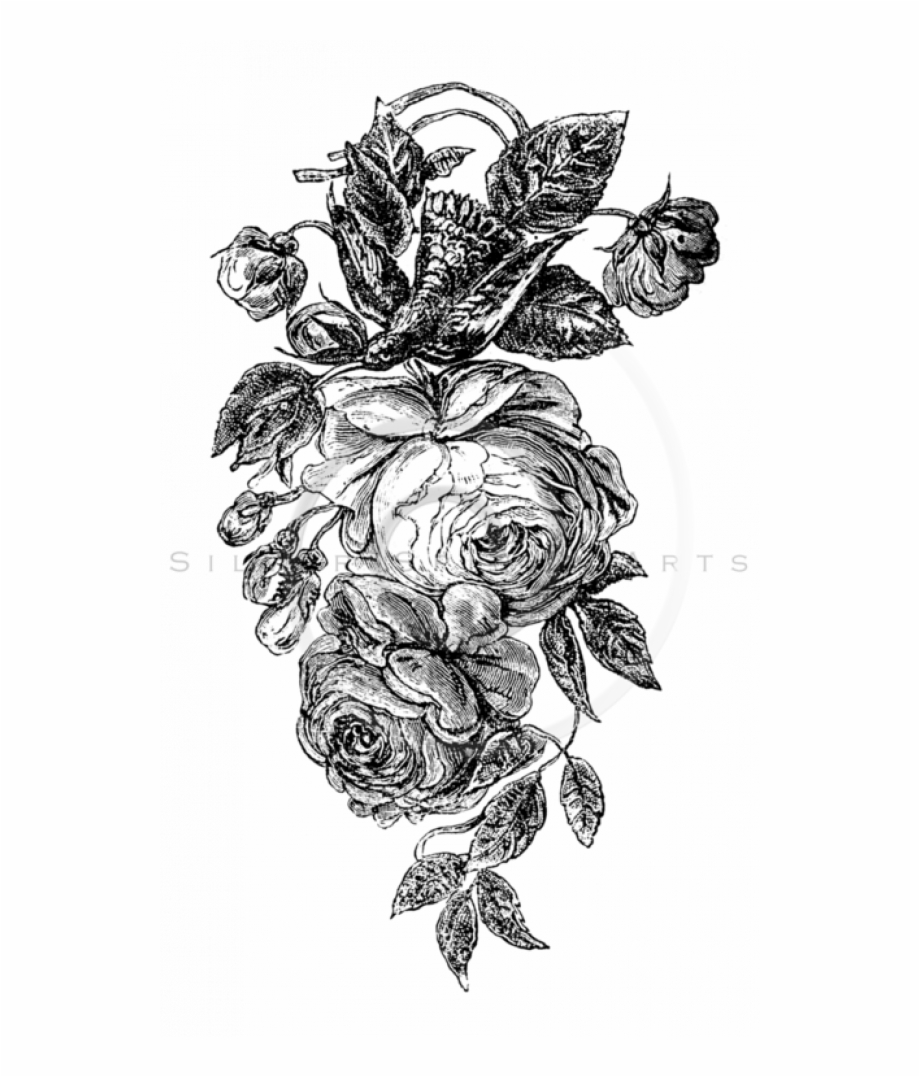 Black And White Rose Png Transparent Png Images.