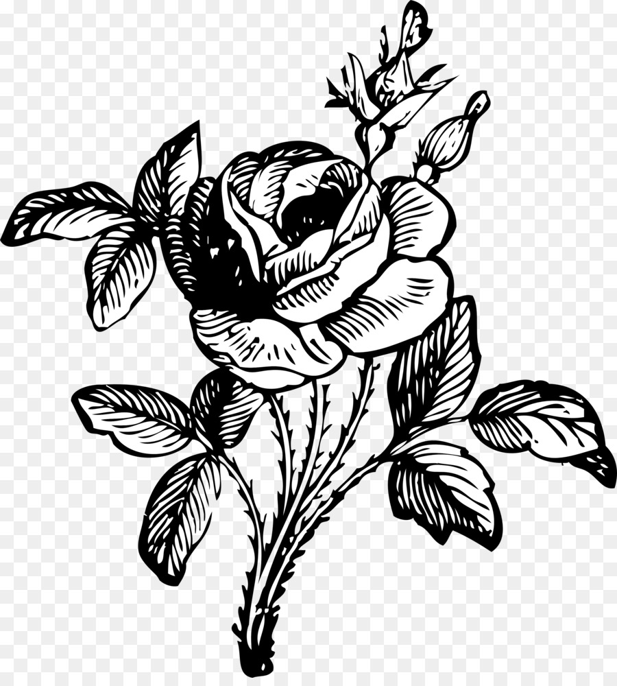 Rose Flower Png Black And White & Free Rose Flower Black And White.