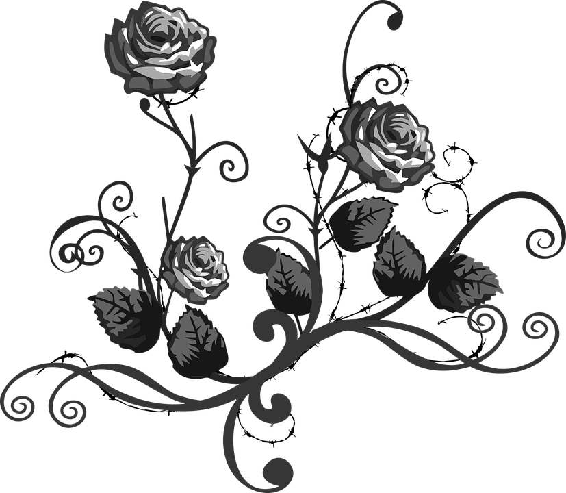 Rose Black White.