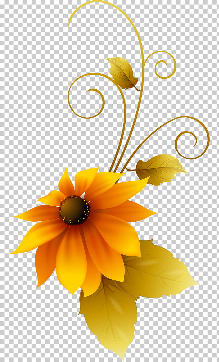 Common sunflower Adobe Photoshop Design Graphics, flower PNG.